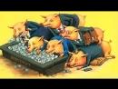 Беды – не дороги и дураки, а коррупция, мусор и старики!