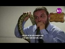 Horror moment US pastor is bitten by a deadly snake during a service leaving him drenched in blood