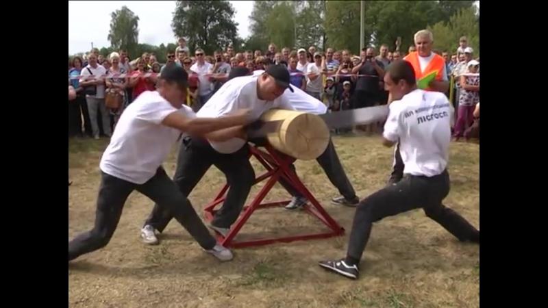 Богатирські ігри в Михайлівці. Лісівники Сумщини провели спартакіаду з лісівничого багатоборства.