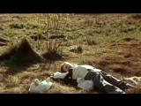 Каштанка (1975)