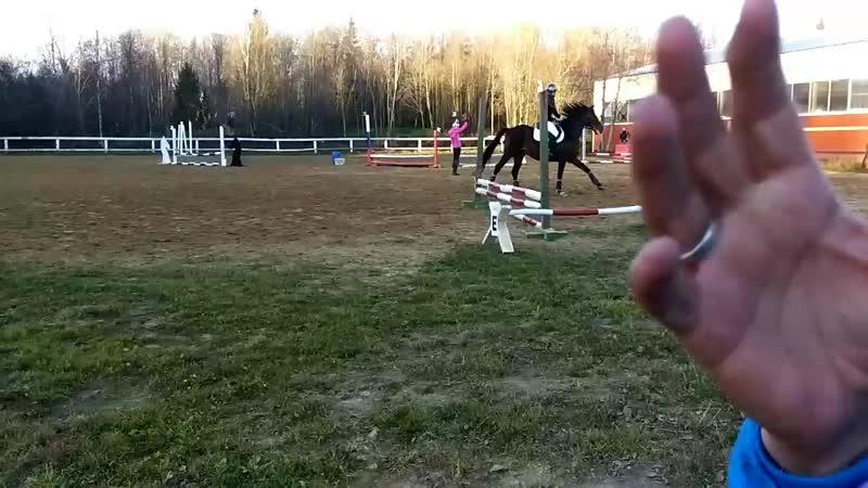 Михаил Артемьев на буденновском Графе в соревнованиях по конкуру на 40см