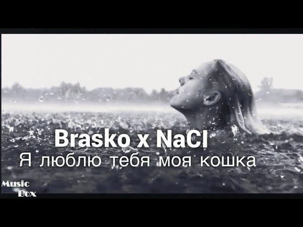 Brasko x NaCl - Я люблю тебя,моя кошка (2018)