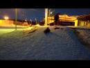 Экопарк - 17.03.18