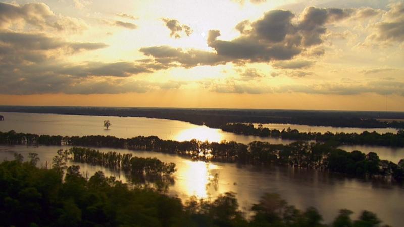 26 декабря в 17:00 смотрите «Дикая природа Миссисипи»