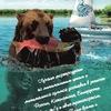 Морепродукты от Пятого Океана подробнее www.ocea