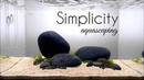 Aquascaping GAME OF RIVER STONE SIMPLICITY