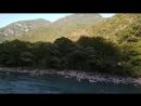 Горная река / Абхазия