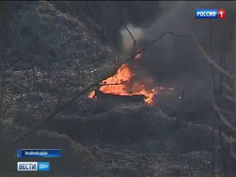 На Дону ландшафтные пожары угрожают популяции животных и птиц
