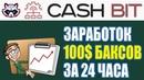 Как Заработать В Интернете 100$ за 24 часа В Проекте Cash Bit Пассивный доход