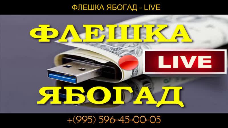 ФЛЕШКА ЯБОГАД LIVE. ПРЯМОЙ ЭФИР. НОВЫЙ КУРС АЛЕКСАНДРА АБЕСЛАМИДЗЕ glopart.ru/public/a/10041335