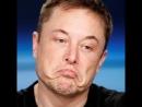 Илон Маск — гений или обманщик?