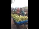 горы_бананов