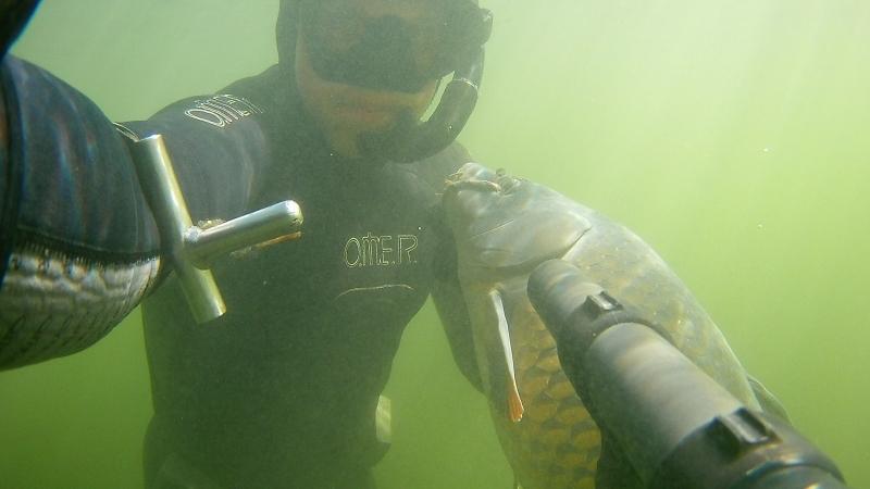 Подводная охота. Верхний Дон..!