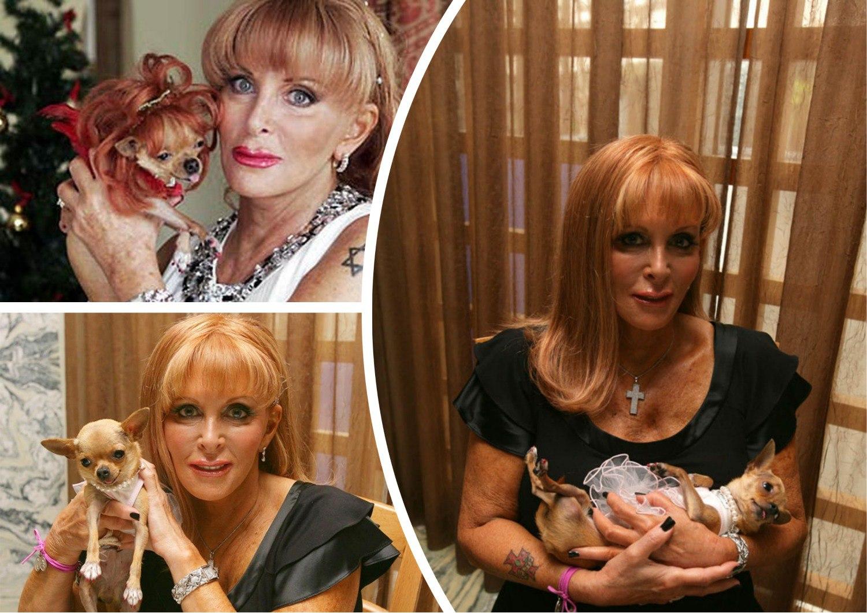 Богатые собаки Кончита, Люсия и Эйприл Мария