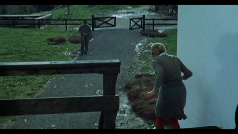 Влюбленные (1968) / Amanti (1968)