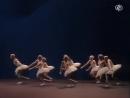 Swan Lake - ballet (Mats Ek)