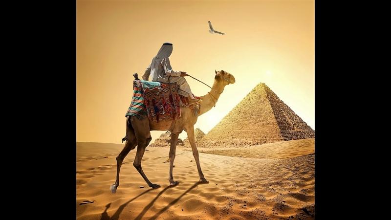 УЖАСНЫЙ отдых в Египте Март 2018 год Шарм_Эль_Шейх часть 2