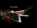 KORG prologue 8 prologue 16 Polyphonic Analogue Synthesizer Live Performance n