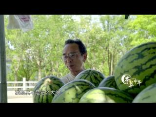本草中华.Herbal.China.City.2017.EP04.WEB-DL.1080P.X264.AAC.Mandarin.CHS.HQC