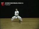 36. Отработка прямых ударов в стойке шико-дачи-1.mp4