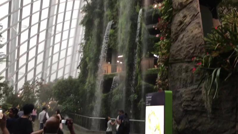 Сад Сингапур