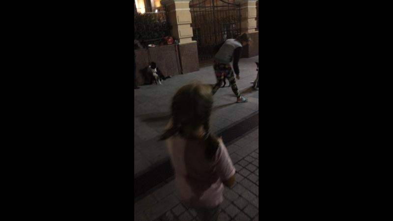 Лана Малышева — Live
