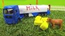 Caminhão de leite. Carros ajudantes. Vídeos de brinquedos.
