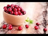 Top Cranberry Health Benefits