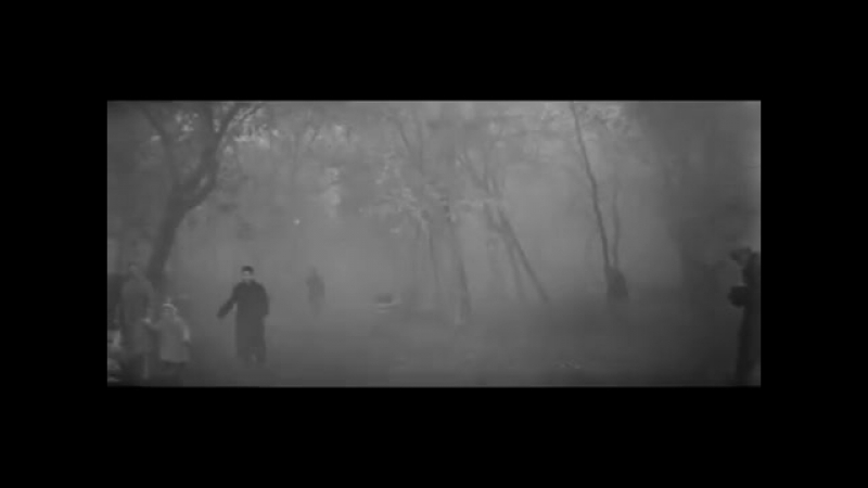 Июльский дождь 1966 Отрывок