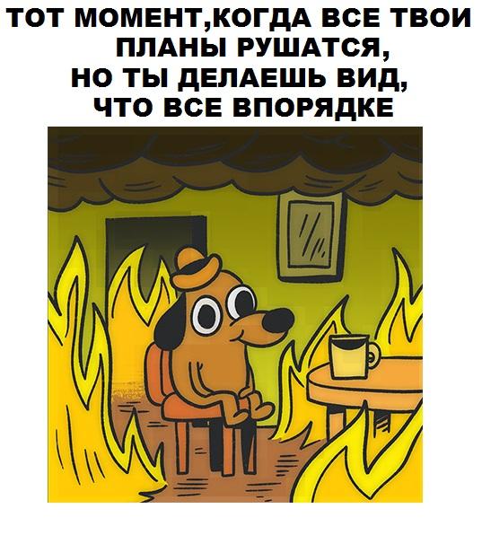Фото №456259820 со страницы Дмитрия Кудинова
