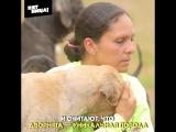 Страна бродячих собак // Орел и Решка. Америка