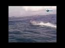 Молниеносные катастрофы эпизод 32 реалити-шоу, документальный фильм