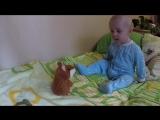 говорящий хомяк учит младенца разговаривать_HIGH.mp4