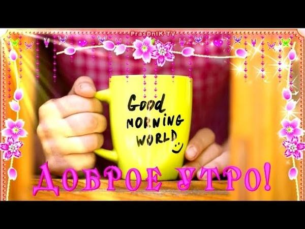 Удачной среды С добрым утром Хорошего дня