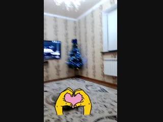 VID_24371128_042947_294.mp4
