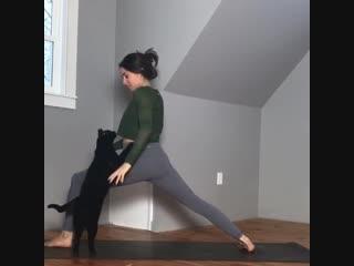 зачем тебе йога, когда есть я.