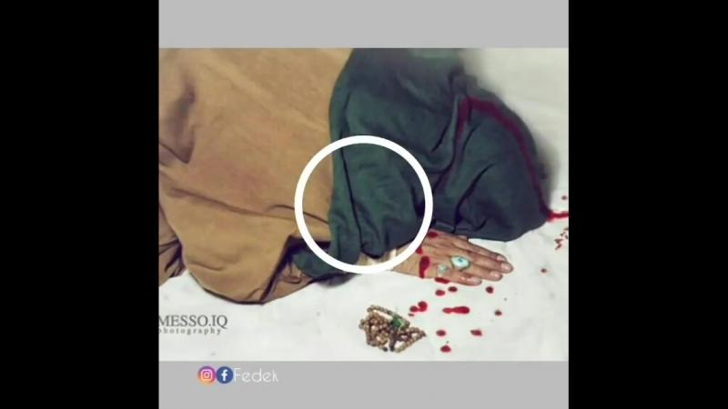 _zehra_asiqi_83_video_1531639672930.mp4