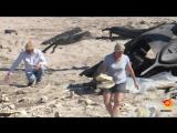 Терминатор 6 - Видео со съёмок