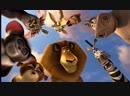 Ночь кино : Мадагаскар 2 3 , Пингвины из Мадагаскара