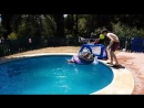 Slo mo of lad throwing a ball at the head of his brother in the pool but it rebo