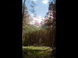 Алексей Морозов - Live
