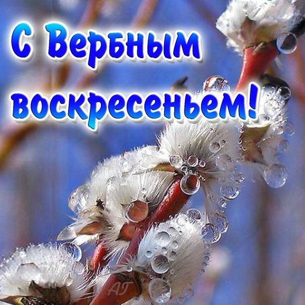 Татьяна Берестова   Санкт-Петербург