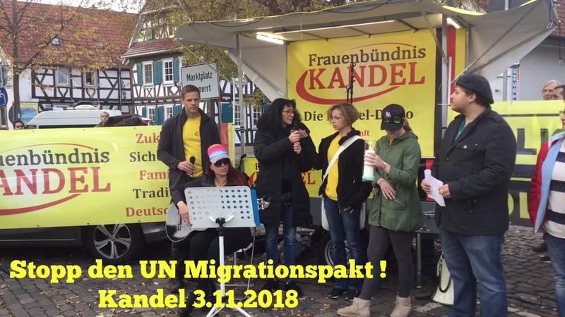 Stoppt den Migrationspakt. Aufruf aus Kandel 3.11.2018