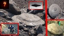 Тайная связь с внеземной цивилизацией. Зачем эти существа ищут контакт с людьми