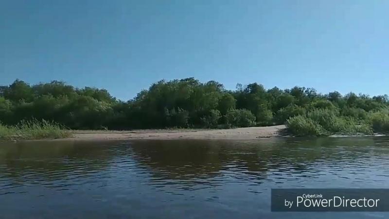 В гостях у реки Молома.