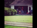 Neighbor vacuum