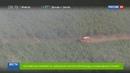 Новости на Россия 24 МЧС поможет тушить пожары в Португалии