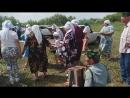 Моисеевка 14.07.2018 1 видео
