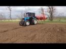 Посевная подсолнечника трактор Мтз-1025