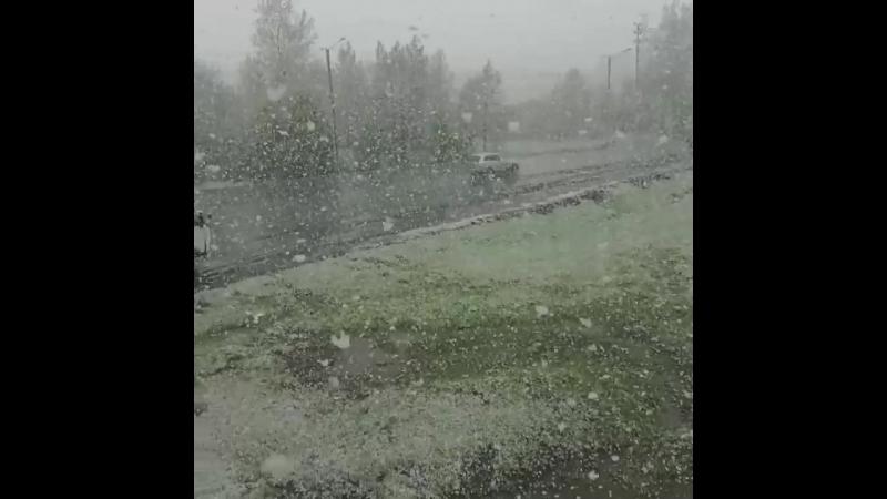 24 мая. Весна на исходе. Через 7 дней - лето. ЛЕТО... А снег не знал и падал...